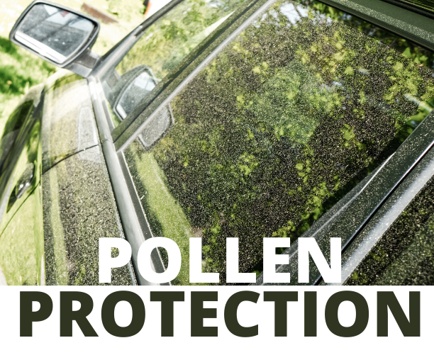 Time To Shine Car Wash Pollen Protection